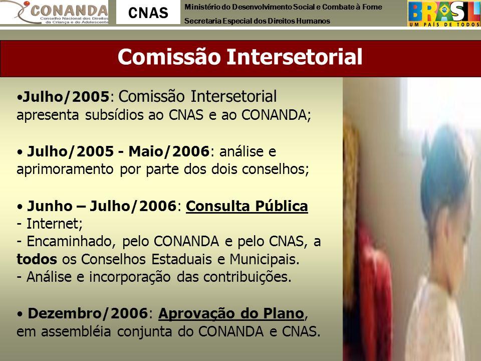 Ministério do Desenvolvimento Social e Combate à Fome Secretaria Especial dos Direitos Humanos CNAS Comissão Intersetorial Julho/2005: Comissão Inters
