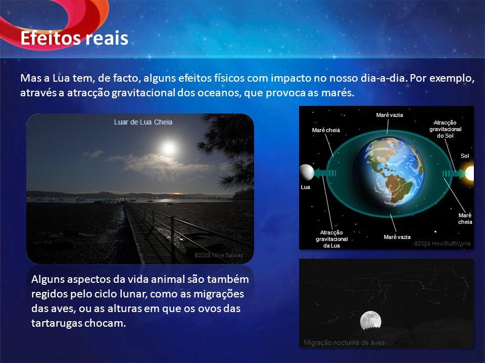 Mas a Lua tem, de facto, alguns efeitos físicos com impacto no nosso dia-a-dia. Por exemplo, através a atracção gravitacional dos oceanos, que provoca