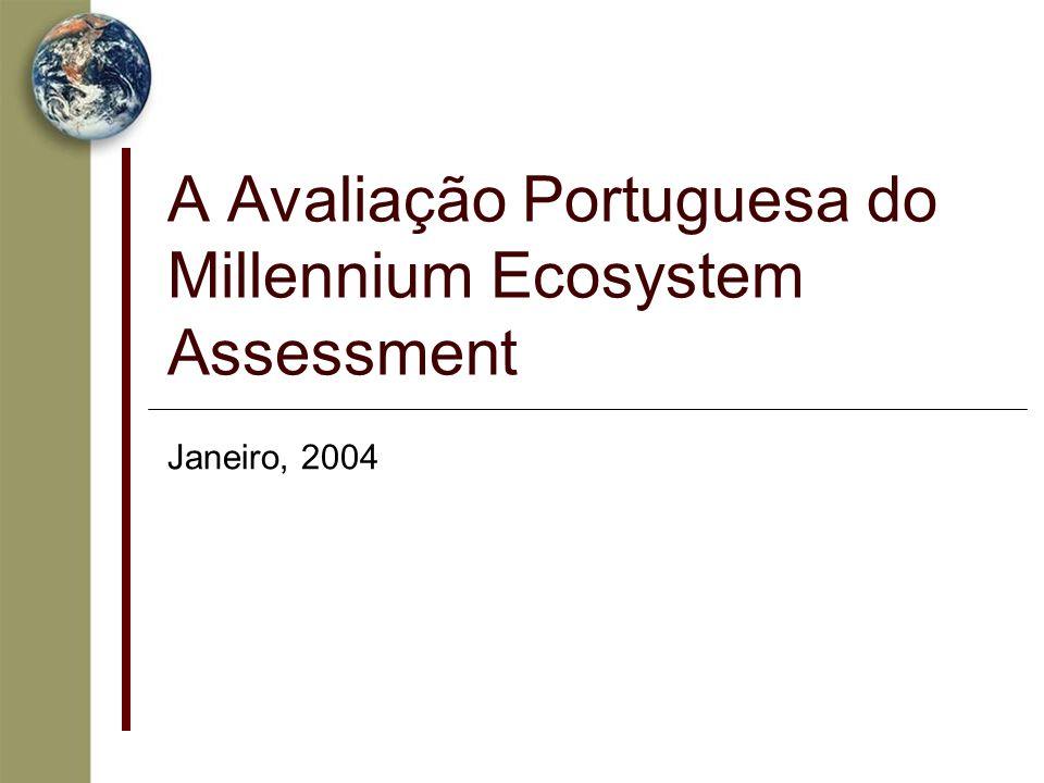 A Avaliação Portuguesa do Millennium Ecosystem Assessment Janeiro, 2004