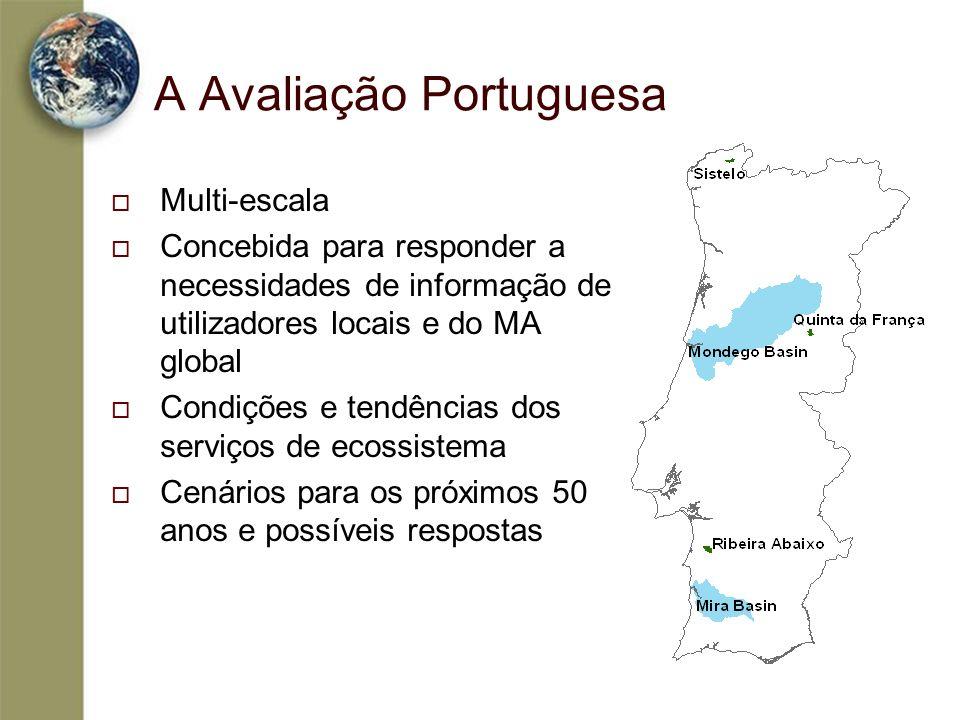 A Avaliação Portuguesa Multi-escala Concebida para responder a necessidades de informação de utilizadores locais e do MA global Condições e tendências