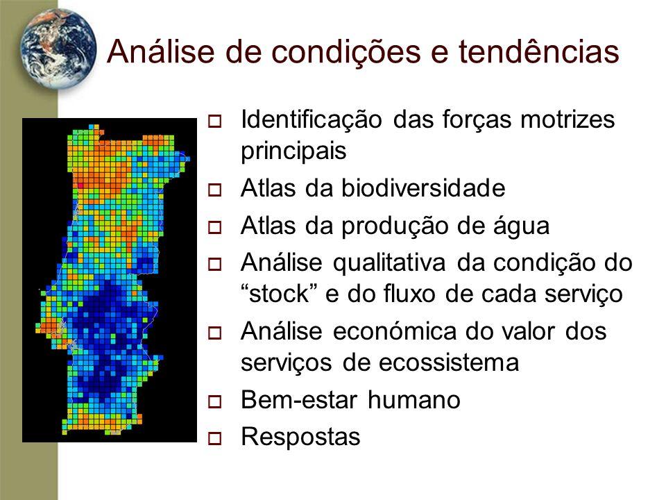 Análise de condições e tendências Identificação das forças motrizes principais Atlas da biodiversidade Atlas da produção de água Análise qualitativa d