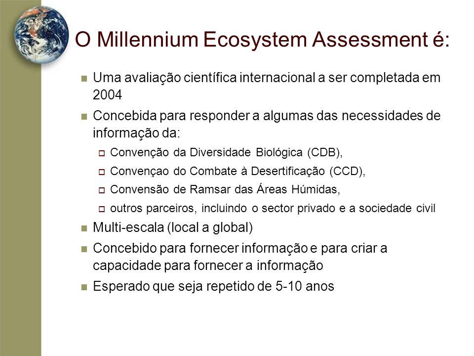 O Millennium Ecosystem Assessment é: Uma avaliação científica internacional a ser completada em 2004 Concebida para responder a algumas das necessidad