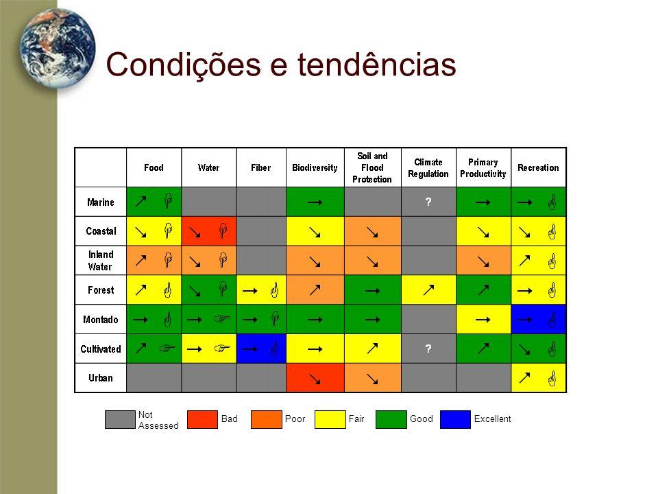 Condições e tendências Not Assessed BadPoorFairGoodExcellent