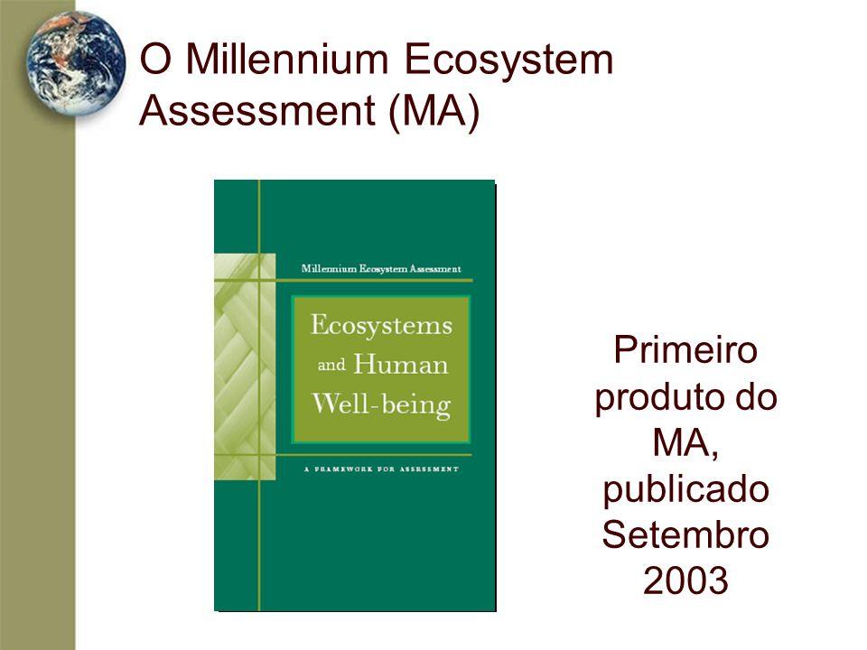 O Millennium Ecosystem Assessment (MA) Primeiro produto do MA, publicado Setembro 2003