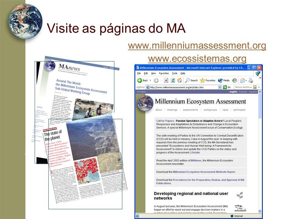 Visite as páginas do MA www.millenniumassessment.org www.ecossistemas.org