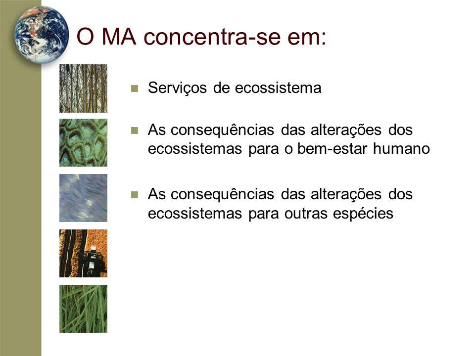 O MA concentra-se em: Serviços de ecossistema As consequências das alterações dos ecossistemas para o bem-estar humano As consequências das alterações