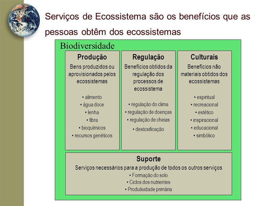 Biodiversidade Serviços de Ecossistema são os benefícios que as pessoas obtêm dos ecossistemas Regulação Benefícios obtidos da regulação dos processos