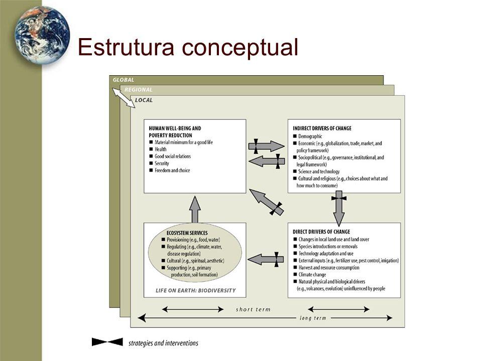 Estrutura conceptual