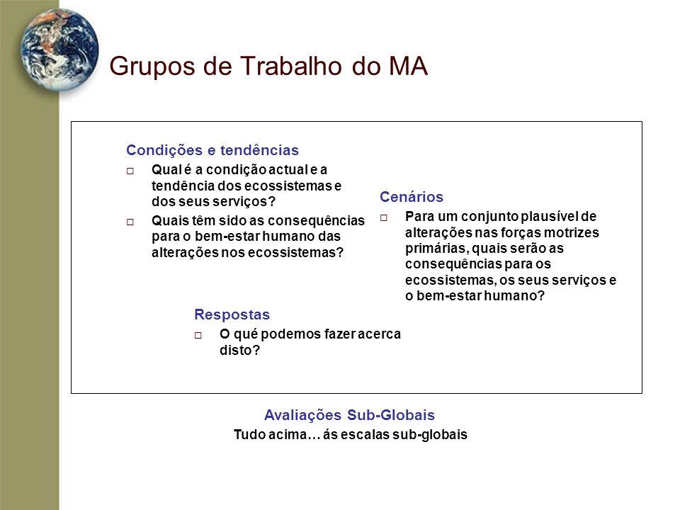 Grupos de Trabalho do MA Cenários Para um conjunto plausível de alterações nas forças motrizes primárias, quais serão as consequências para os ecossis