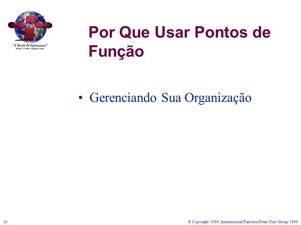 © Copyright 1999. International Function Point User Group 199916 Por Que Usar Pontos de Função Gerenciando Sua Organização