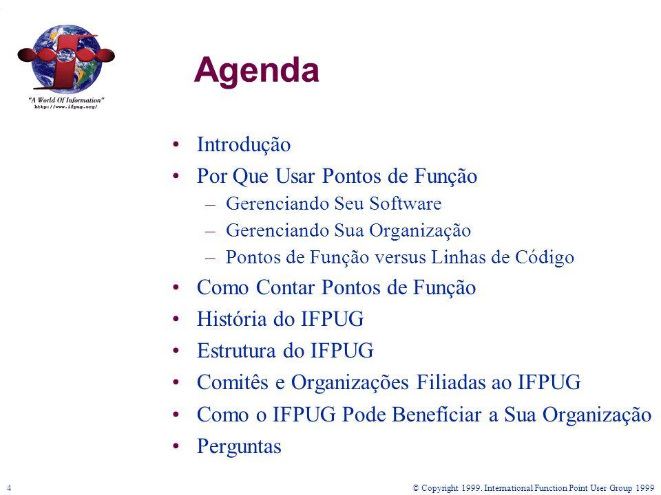 © Copyright 1999. International Function Point User Group 19994 Agenda Introdução Por Que Usar Pontos de Função –Gerenciando Seu Software –Gerenciando