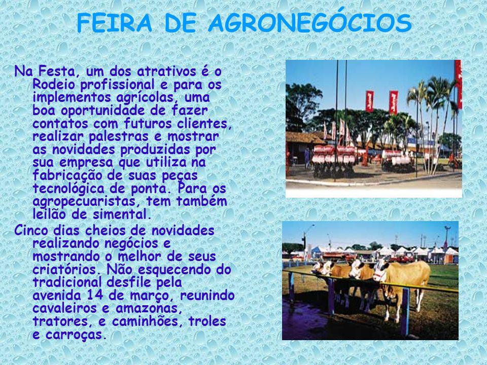 CARNAVAL É conhecido como o melhor carnaval de rua da região que apresenta aproximadamente sete escolas de samba, dentre elas: a Castelo, a Império do samba, a Unidos do morro, a Baroel, a Acadêmicos do samba, etc...