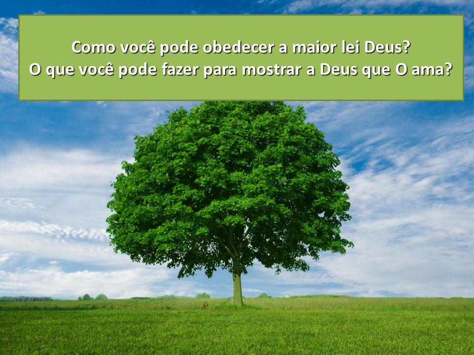 Como você pode obedecer a maior lei Deus? O que você pode fazer para mostrar a Deus que O ama? 1. Pedir conselhos a Deus. 4. Pensar sobre Deus estar c