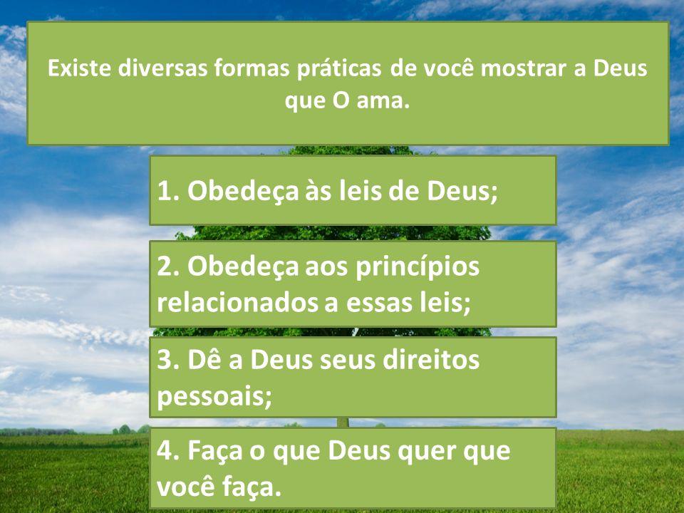 Existe diversas formas práticas de você mostrar a Deus que O ama. 1. Obedeça às leis de Deus; 2. Obedeça aos princípios relacionados a essas leis; 3.