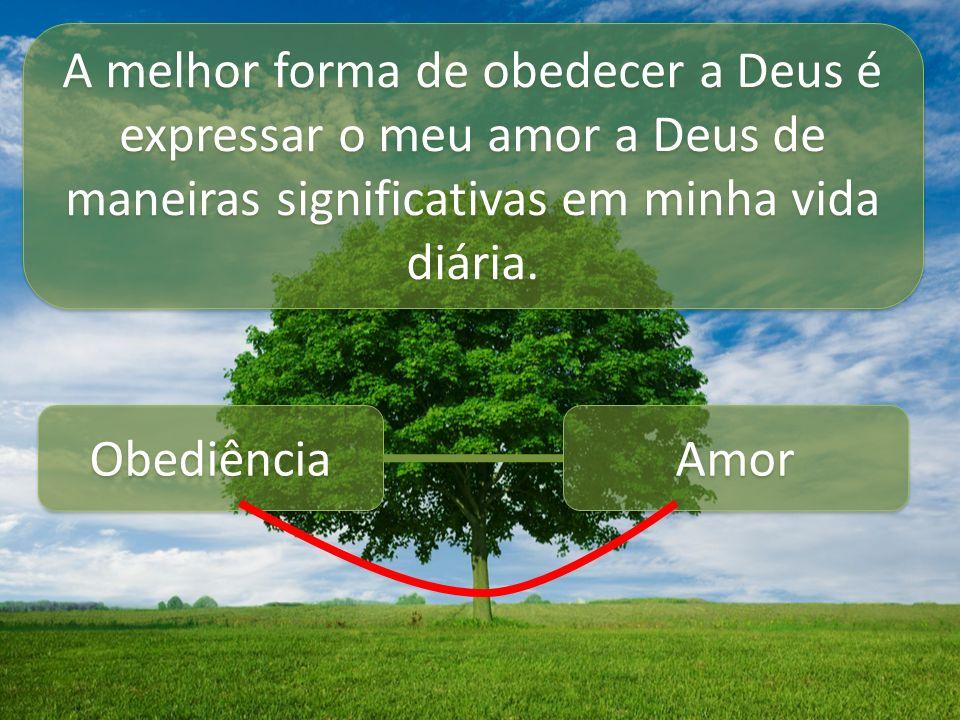 A melhor forma de obedecer a Deus é expressar o meu amor a Deus de maneiras significativas em minha vida diária. Obediência Amor