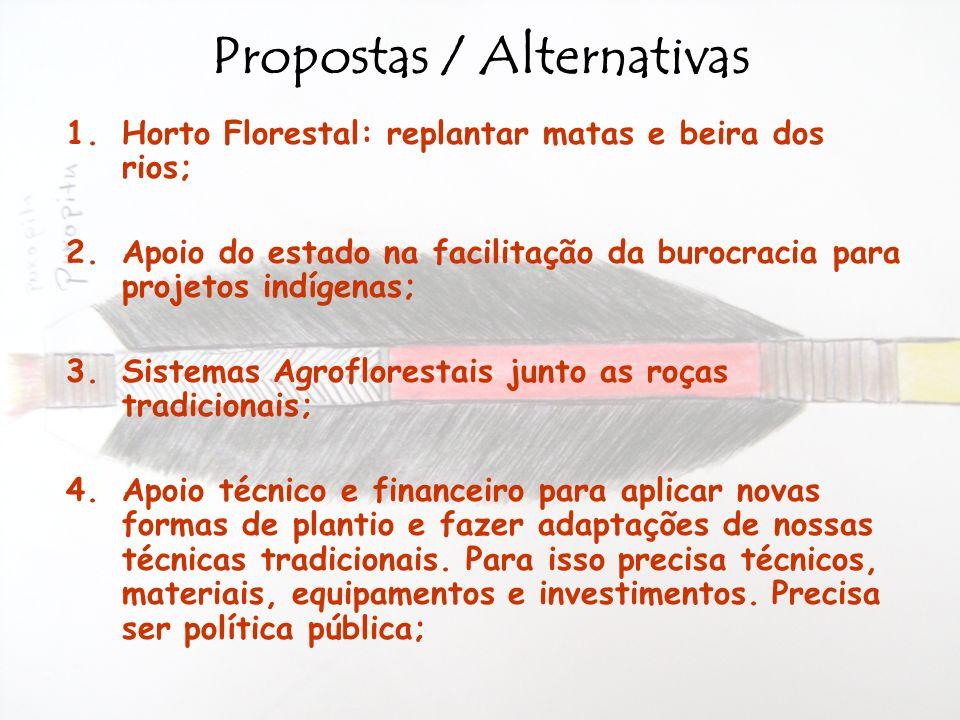 Propostas / Alternativas 1.Horto Florestal: replantar matas e beira dos rios; 2.Apoio do estado na facilitação da burocracia para projetos indígenas;