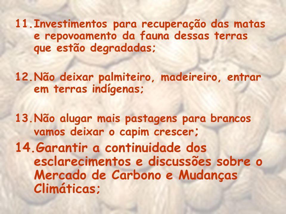 11.Investimentos para recuperação das matas e repovoamento da fauna dessas terras que estão degradadas; 12.Não deixar palmiteiro, madeireiro, entrar e