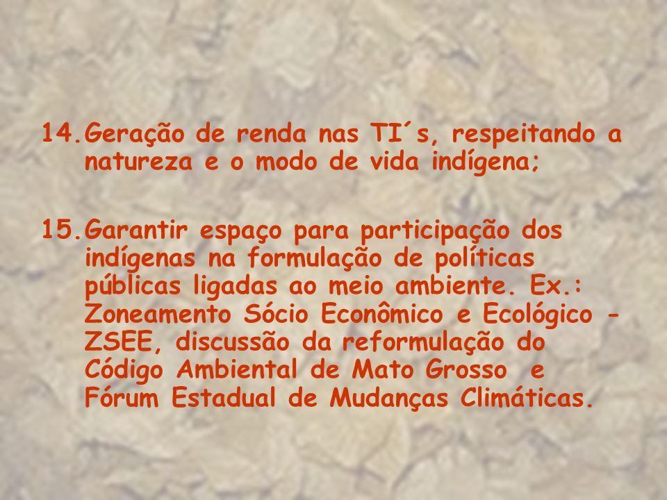 14.Geração de renda nas TI´s, respeitando a natureza e o modo de vida indígena; 15.Garantir espaço para participação dos indígenas na formulação de po