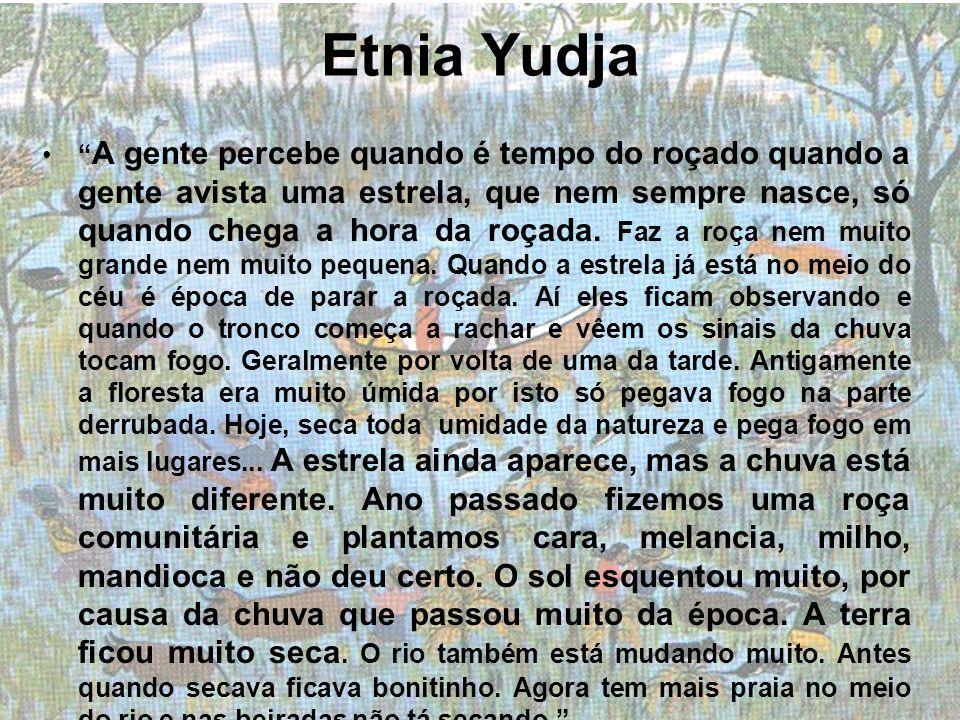Etnia Yudja A gente percebe quando é tempo do roçado quando a gente avista uma estrela, que nem sempre nasce, só quando chega a hora da roçada. Faz a