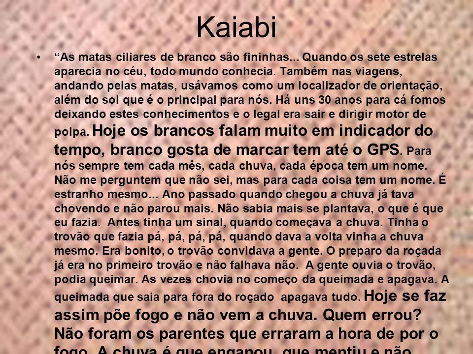 Kaiabi As matas ciliares de branco são fininhas... Quando os sete estrelas aparecia no céu, todo mundo conhecia. Também nas viagens, andando pelas mat