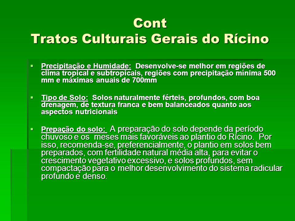 Cont Tratos Culturais Gerais do Rícino Precipitação e Humidade: Desenvolve-se melhor em regiões de clima tropical e subtropicais, regiões com precipit