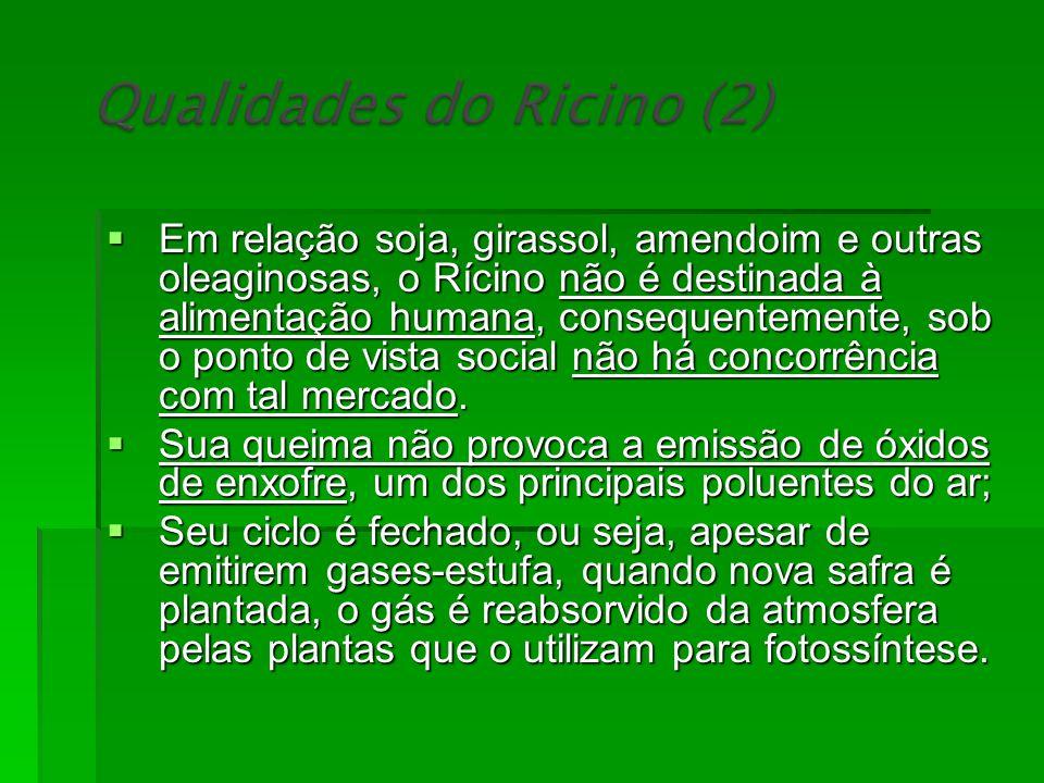 Em relação soja, girassol, amendoim e outras oleaginosas, o Rícino não é destinada à alimentação humana, consequentemente, sob o ponto de vista social