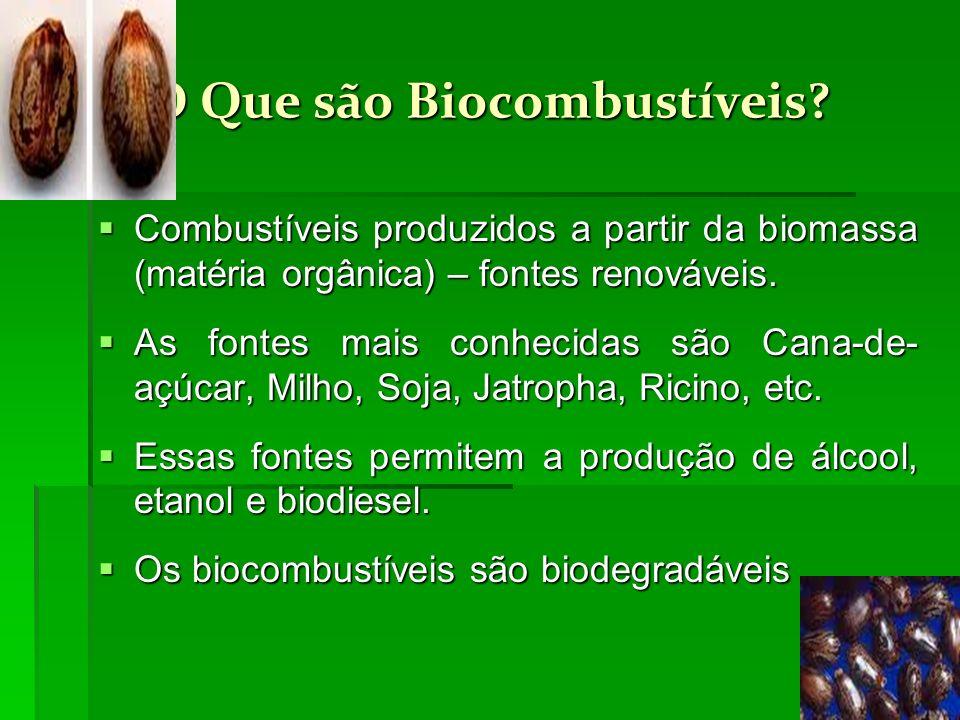 O Que são Biocombustíveis? Combustíveis produzidos a partir da biomassa (matéria orgânica) – fontes renováveis. Combustíveis produzidos a partir da bi