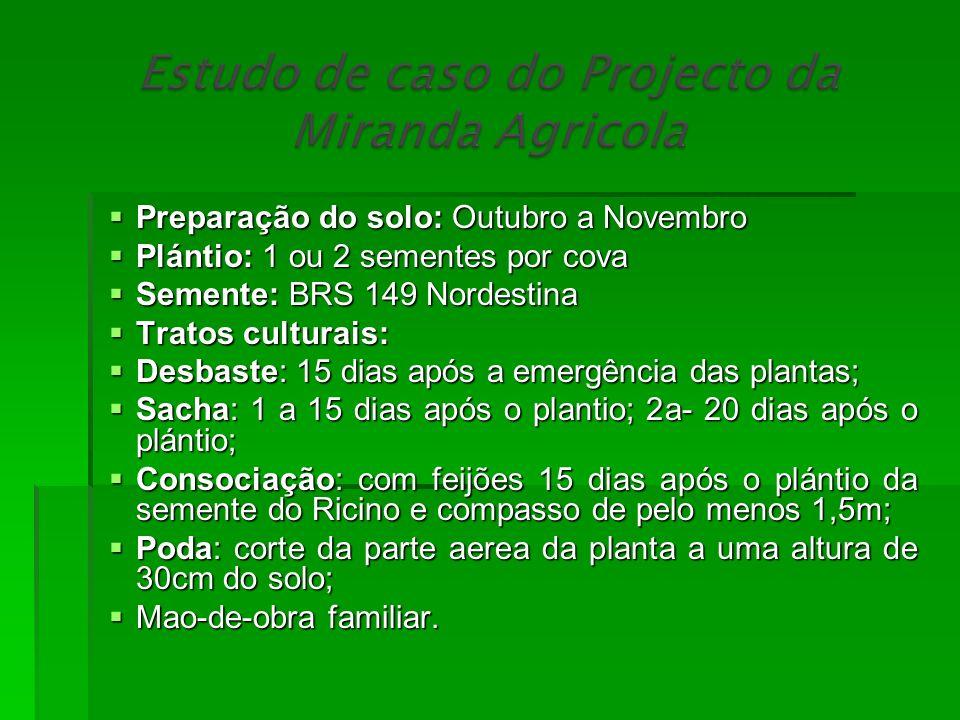 Preparação do solo: Outubro a Novembro Preparação do solo: Outubro a Novembro Plántio: 1 ou 2 sementes por cova Plántio: 1 ou 2 sementes por cova Seme