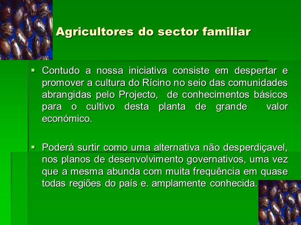 Agricultores do sector familiar Contudo a nossa iniciativa consiste em despertar e promover a cultura do Rícino no seio das comunidades abrangidas pel