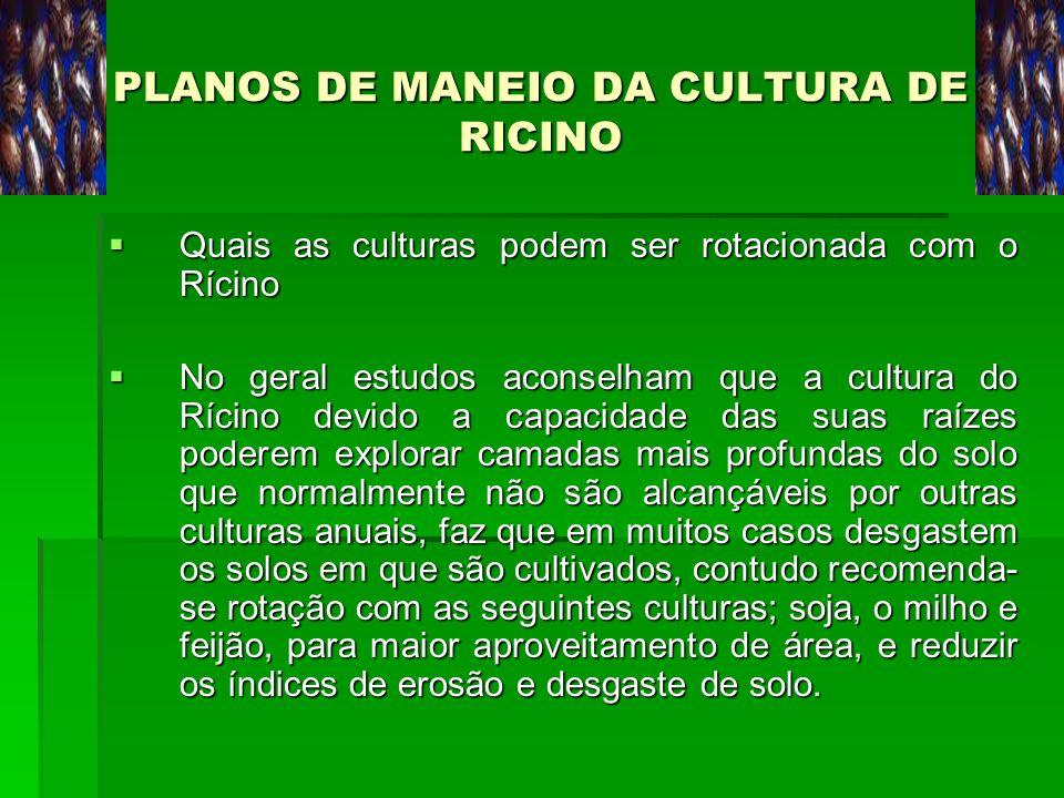 PLANOS DE MANEIO DA CULTURA DE RICINO Quais as culturas podem ser rotacionada com o Rícino Quais as culturas podem ser rotacionada com o Rícino No ger