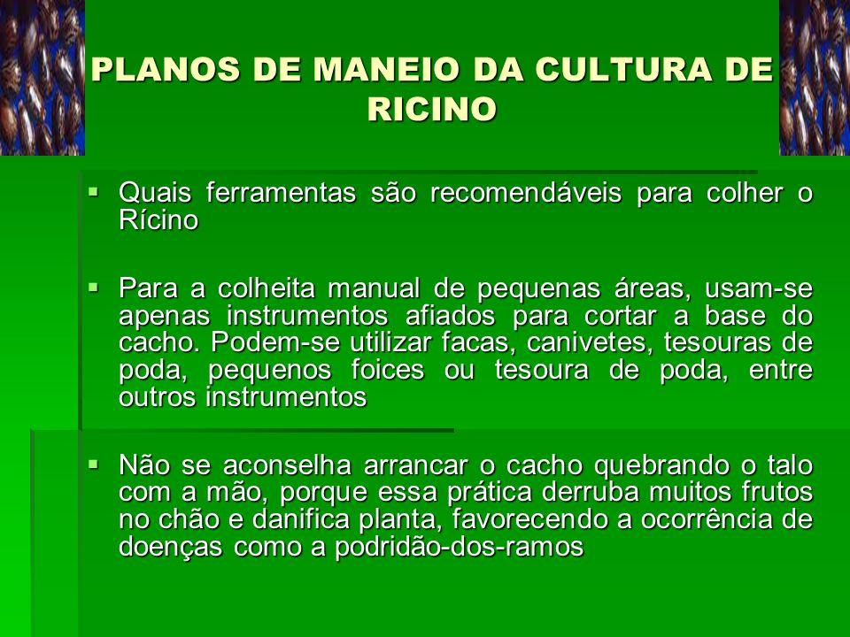 PLANOS DE MANEIO DA CULTURA DE RICINO Quais ferramentas são recomendáveis para colher o Rícino Quais ferramentas são recomendáveis para colher o Rícin