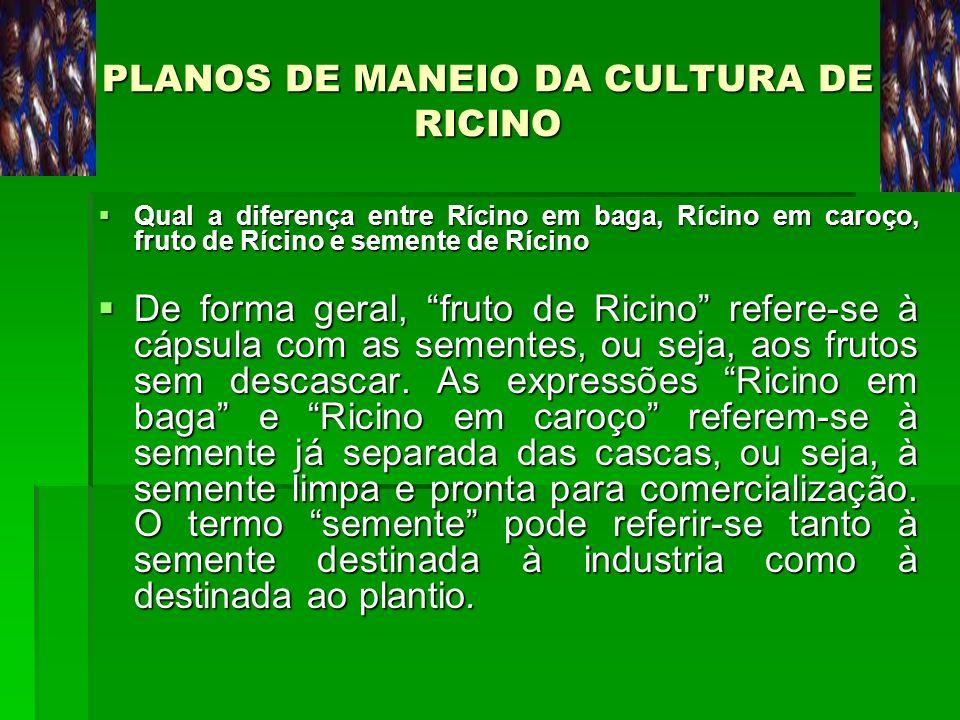 PLANOS DE MANEIO DA CULTURA DE RICINO Qual a diferença entre Rícino em baga, Rícino em caroço, fruto de Rícino e semente de Rícino Qual a diferença en