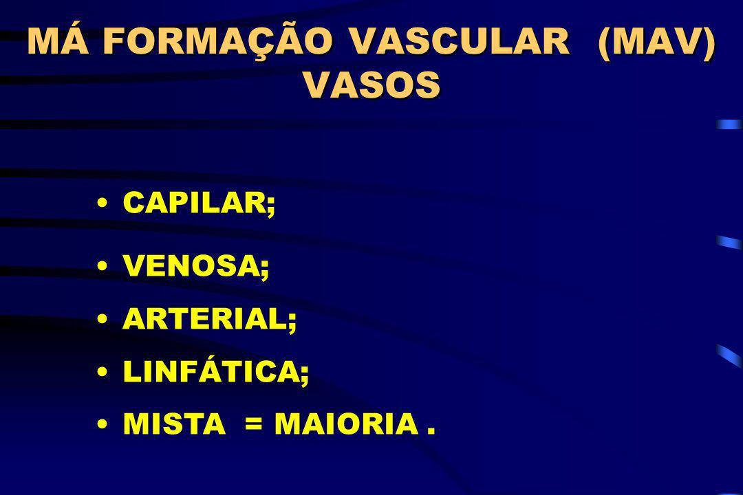 CAPILAR; VENOSA; ARTERIAL; LINFÁTICA; MISTA = MAIORIA. MÁ FORMAÇÃO VASCULAR (MAV) VASOS