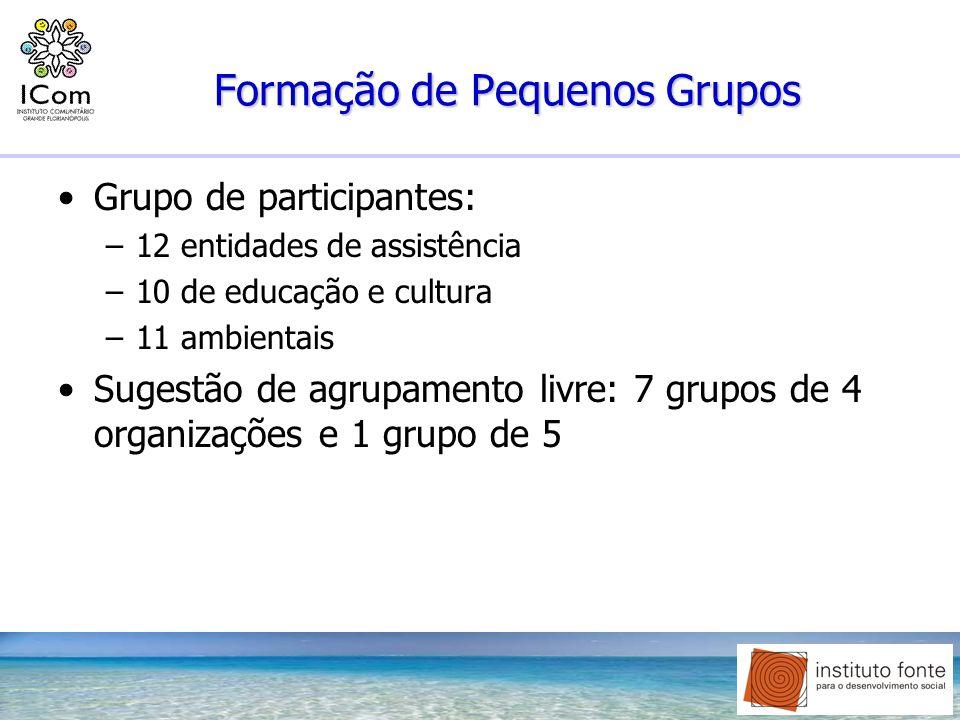 Formação de Pequenos Grupos Grupo de participantes: –12 entidades de assistência –10 de educação e cultura –11 ambientais Sugestão de agrupamento livr