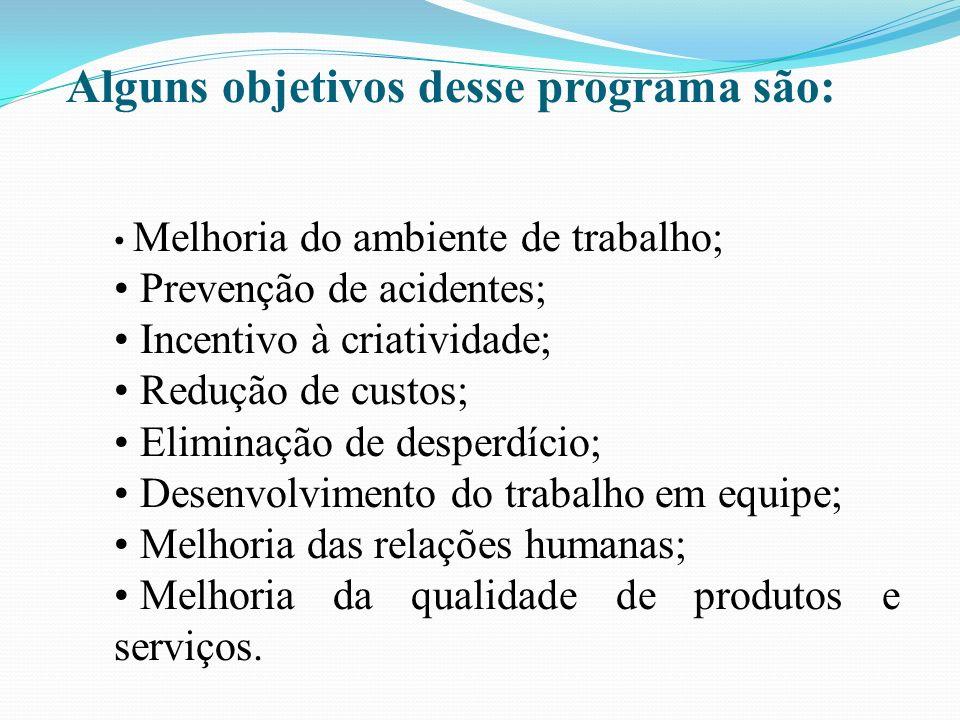 Alguns objetivos desse programa são: Melhoria do ambiente de trabalho; Prevenção de acidentes; Incentivo à criatividade; Redução de custos; Eliminação