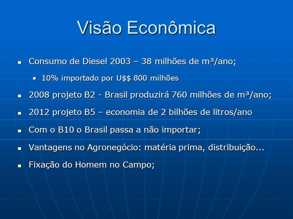 Visão Econômica Consumo de Diesel 2003 – 38 milhões de m³/ano; Consumo de Diesel 2003 – 38 milhões de m³/ano; 10% importado por U$$ 800 milhões10% imp
