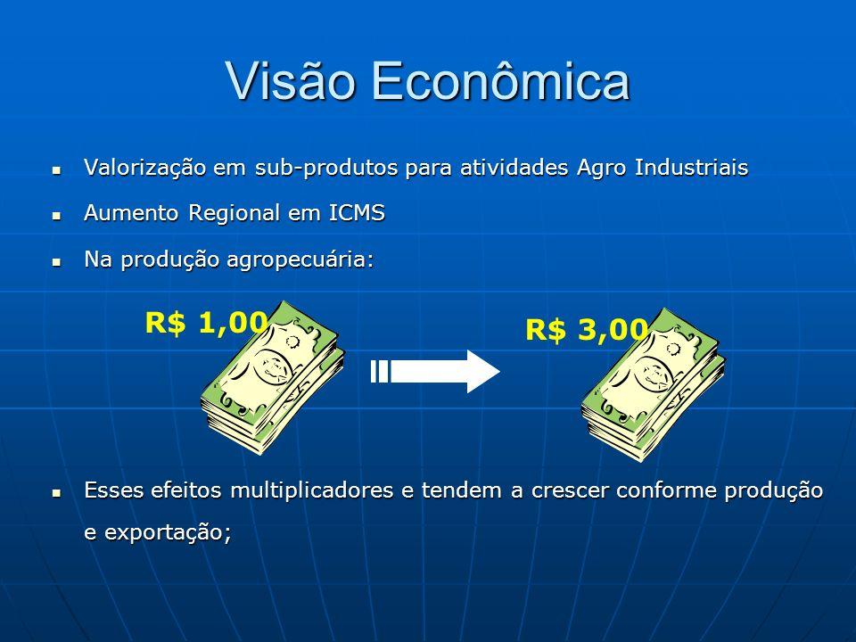 Visão Econômica Valorização em sub-produtos para atividades Agro Industriais Valorização em sub-produtos para atividades Agro Industriais Aumento Regi