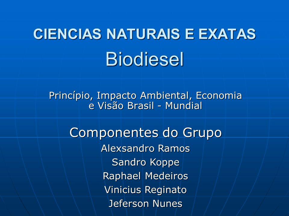CIENCIAS NATURAIS E EXATAS Biodiesel Princípio, Impacto Ambiental, Economia e Visão Brasil - Mundial Componentes do Grupo Alexsandro Ramos Sandro Kopp