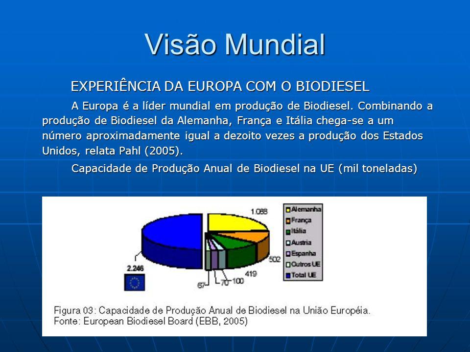 Visão Mundial EXPERIÊNCIA DA EUROPA COM O BIODIESEL EXPERIÊNCIA DA EUROPA COM O BIODIESEL A Europa é a líder mundial em produção de Biodiesel. Combina