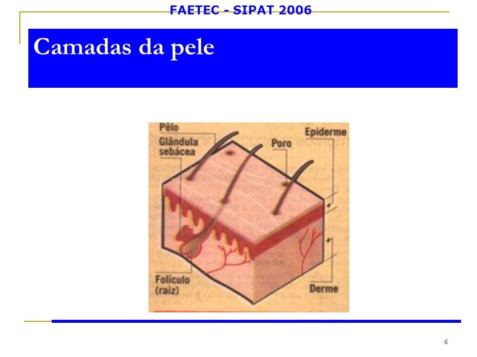 FAETEC - SIPAT 2006 6 Camadas da pele