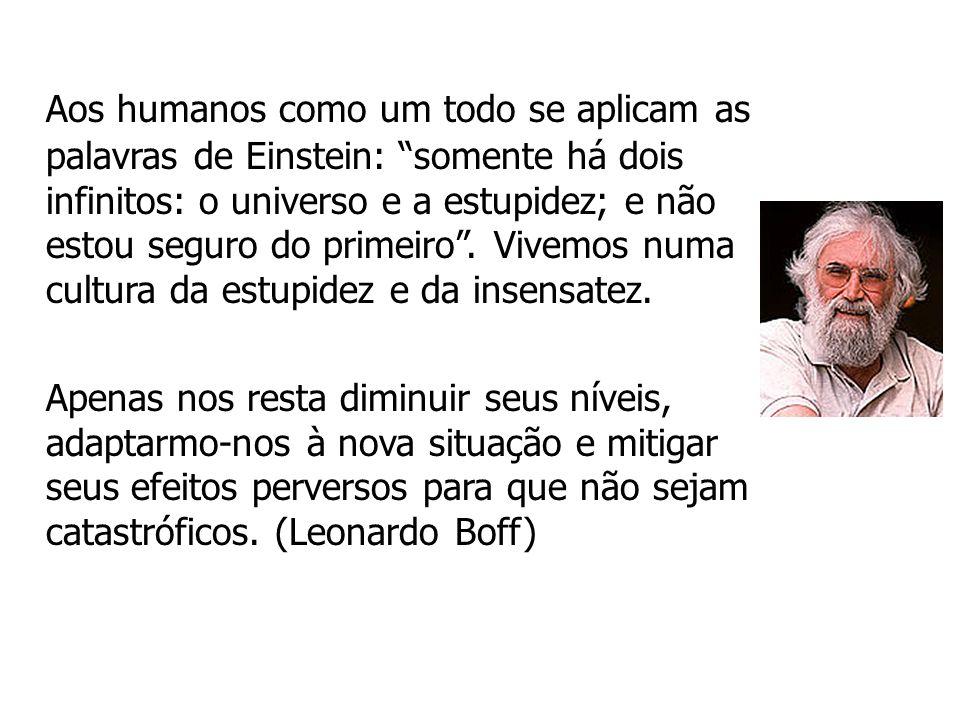 Aos humanos como um todo se aplicam as palavras de Einstein: somente há dois infinitos: o universo e a estupidez; e não estou seguro do primeiro. Vive