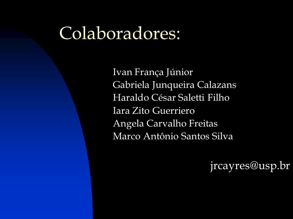 Colaboradores: Ivan França Júnior Gabriela Junqueira Calazans Haraldo César Saletti Filho Iara Zito Guerriero Angela Carvalho Freitas Marco Antônio Sa