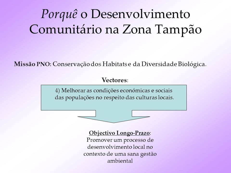 2 Intervenientes principais Objectivos / Interesses Parque Natural ÔboComunidades Zona Tampão Conservar a biodiversidade, através da preservação e valorização dos recursos naturais Bem-estar e sobrevivência da comunidade através dos recursos naturais disponíveis ZONA TAMPÃO