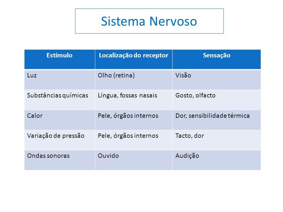 EstímuloLocalização do receptorSensação LuzOlho (retina)Visão Substâncias químicasLíngua, fossas nasaisGosto, olfacto CalorPele, órgãos internosDor, s