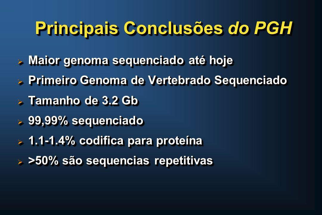 Principais Conclusões do PGH Maior genoma sequenciado até hoje Maior genoma sequenciado até hoje Primeiro Genoma de Vertebrado Sequenciado Primeiro Ge