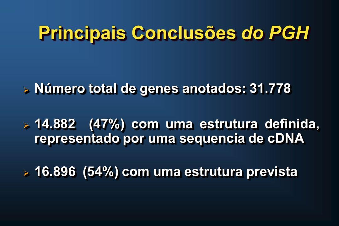Principais Conclusões do PGH Número total de genes anotados: 31.778 Número total de genes anotados: 31.778 14.882 (47%) com uma estrutura definida, re