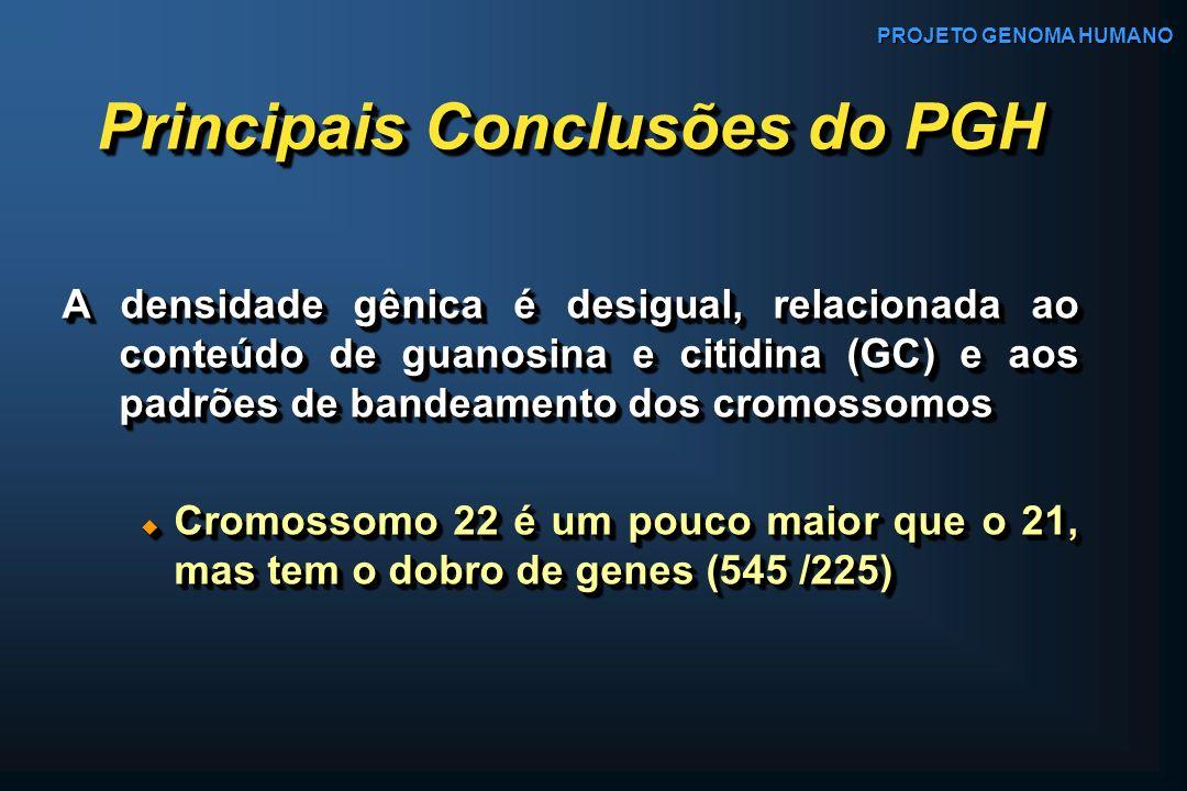 Principais Conclusões do PGH A densidade gênica é desigual, relacionada ao conteúdo de guanosina e citidina (GC) e aos padrões de bandeamento dos crom