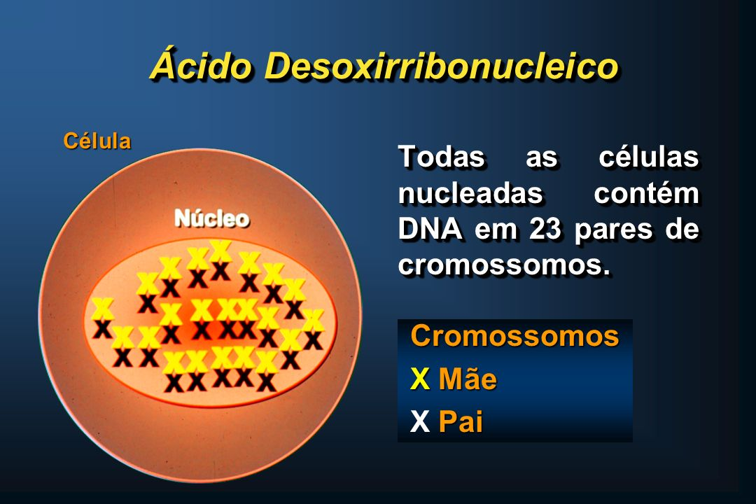 1) Diagnósticas Doenças Monogênicas Doenças Monogênicas Detecção de afetados e portadores Detecção de afetados e portadores Doenças Comuns Doenças Comuns Cancer Cancer Obesidade Obesidade Diabetes Diabetes Hipertensão Arterial Hipertensão Arterial 1) Diagnósticas Doenças Monogênicas Doenças Monogênicas Detecção de afetados e portadores Detecção de afetados e portadores Doenças Comuns Doenças Comuns Cancer Cancer Obesidade Obesidade Diabetes Diabetes Hipertensão Arterial Hipertensão Arterial Implicações para as Ciências da Vida PROJETO GENOMA HUMANO