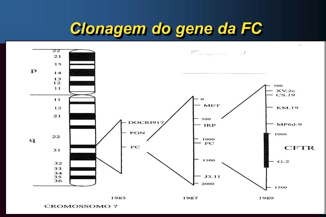 Clonagem do gene da FC