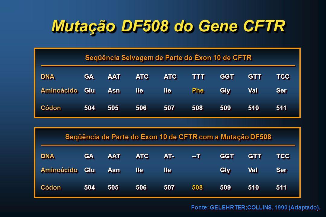 Mutação DF508 do Gene CFTR Seqüência Selvagem de Parte do Éxon 10 de CFTR DNADNAGAGAAATAATATCATCATCATCTTTTTTGGTGGTGTTGTTTCCTCC AminoácidoAminoácidoGlu
